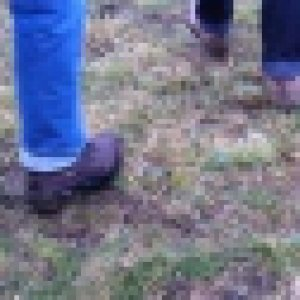 cropped-voeten-wandelen-150x150